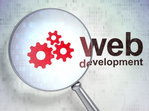 minneapolis web development