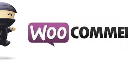 E-Commerce Systems